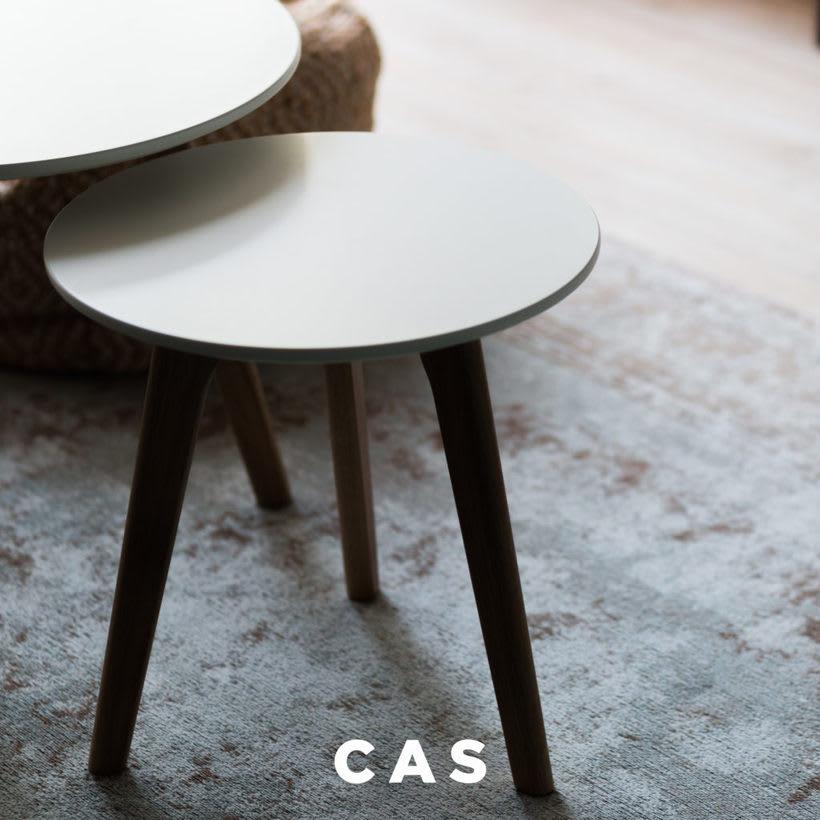 CAS Inmobiliaria 3
