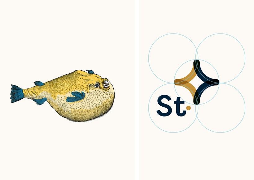 Identidad Corporativa   ^^^^  STC | Seguros 3