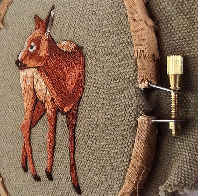 Bambi 6