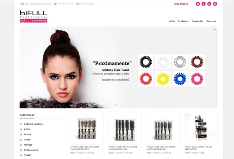 Supervisión de campaña de diseño web y desarrollo de tienda online Bifull 0