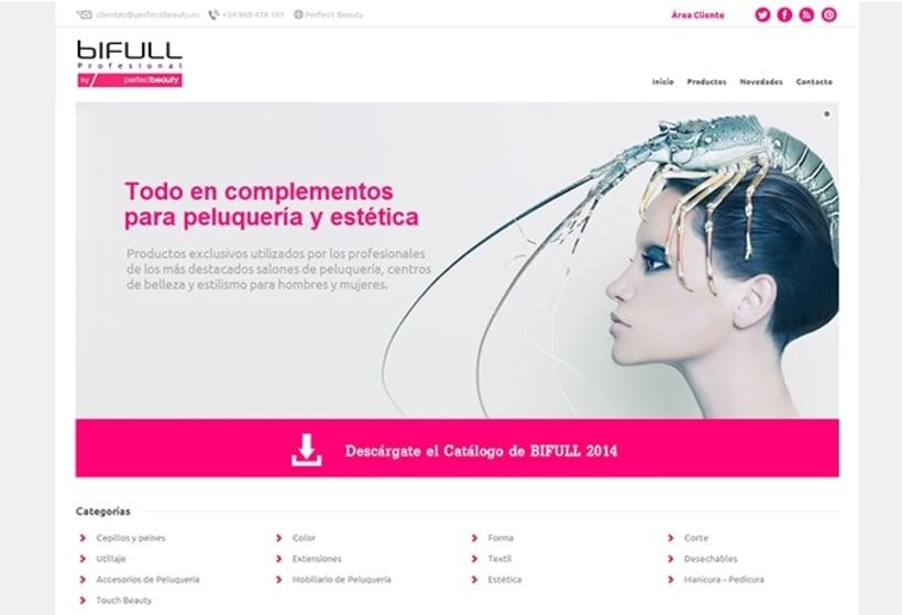 Supervisión de campaña de diseño web y desarrollo de tienda online Bifull 1