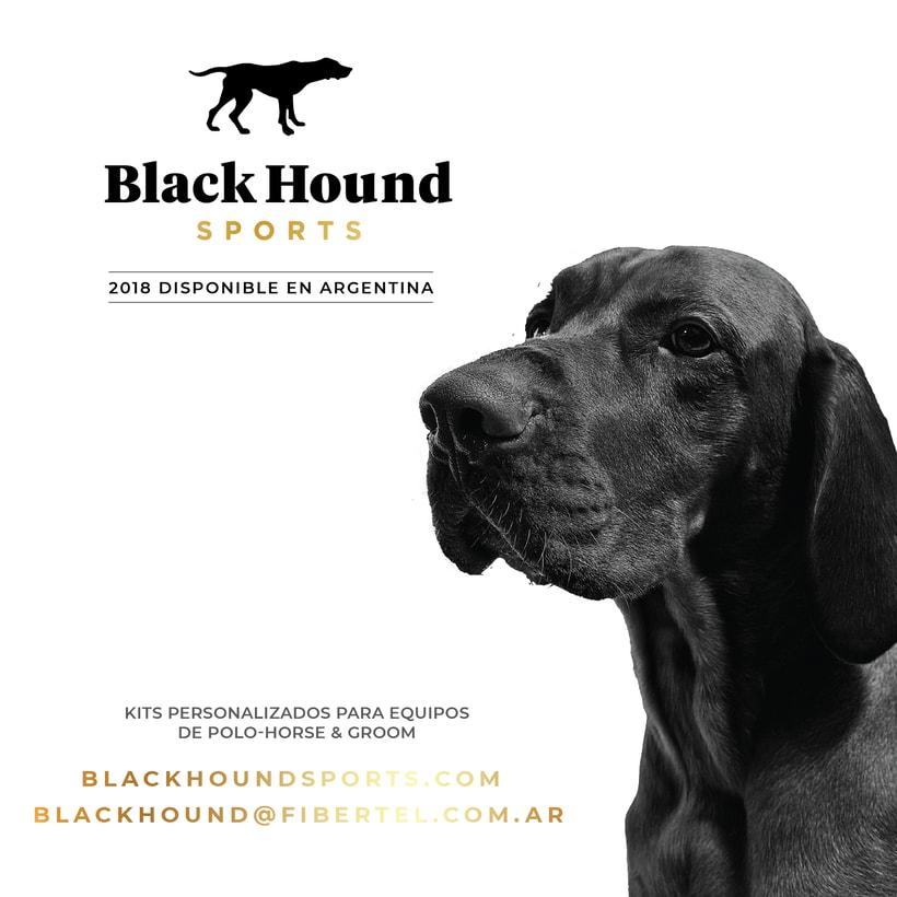 BlackHound Sports / Social Media 2