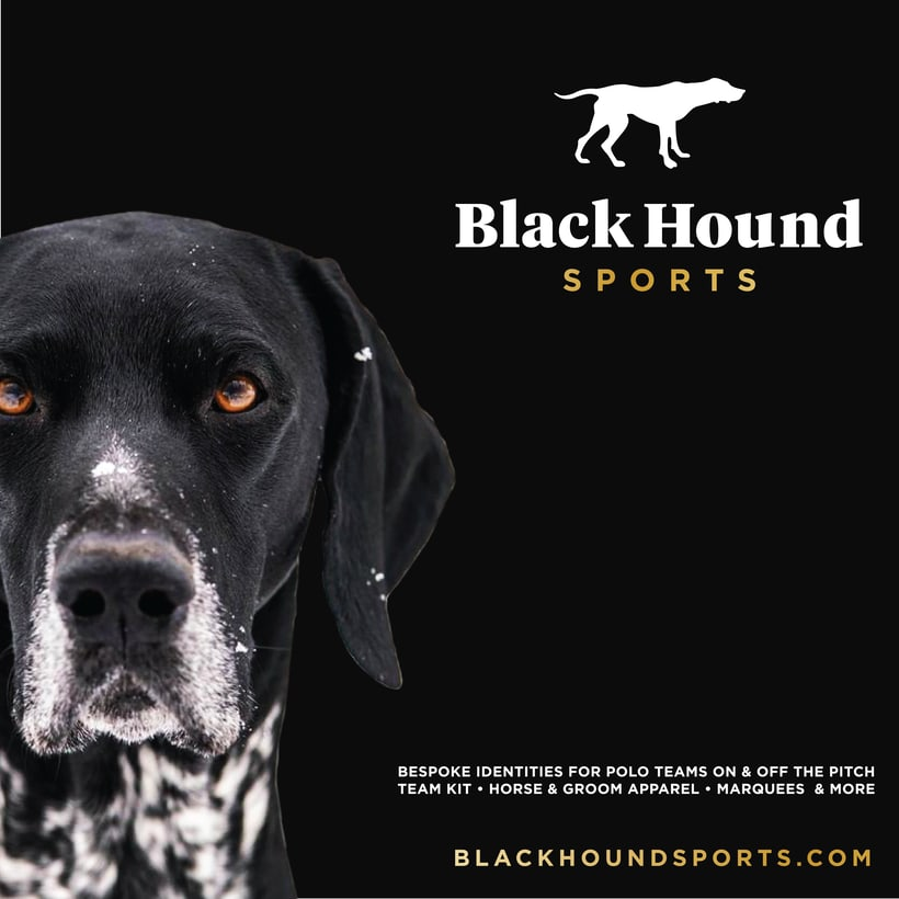 BlackHound Sports / Social Media 3