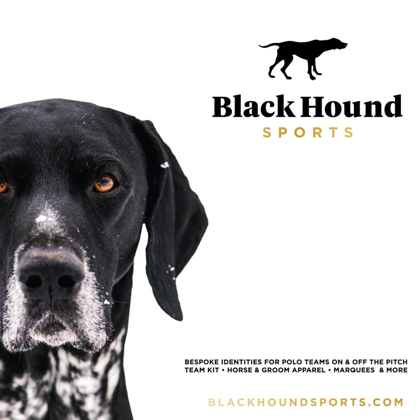 BlackHound Sports / Social Media 4