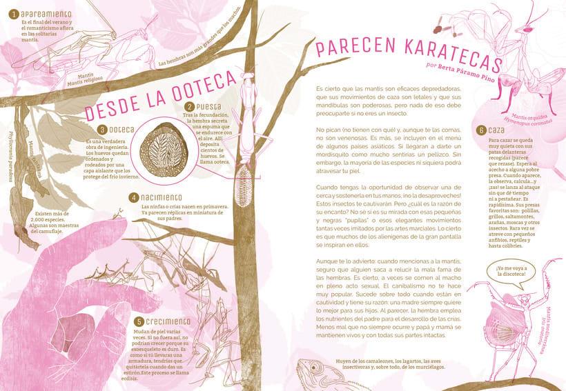 Artículo sobre las mantis en la revista de periodismo cultural para niños ¡La leche! 10 -1
