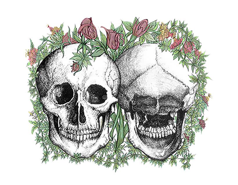 Anatomía viva... ilustrada 1