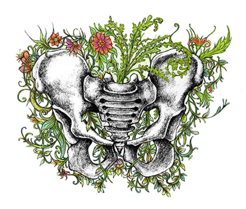 Anatomía viva... ilustrada 2