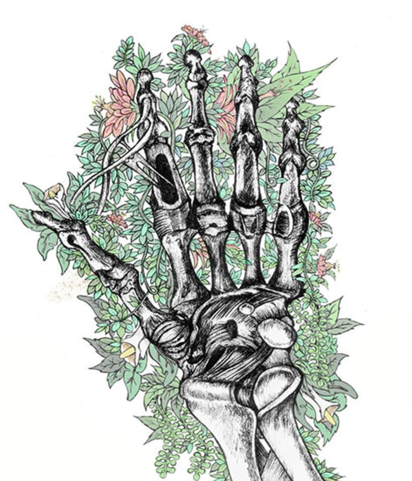 Anatomía viva... ilustrada 3