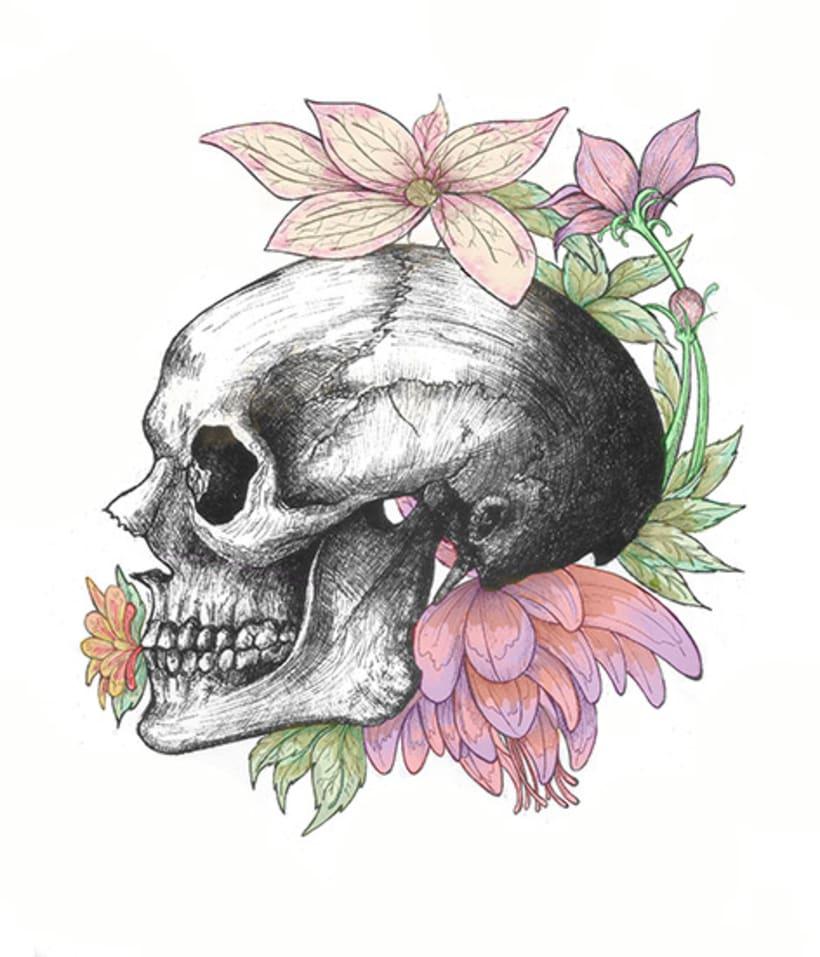 Anatomía viva... ilustrada 4