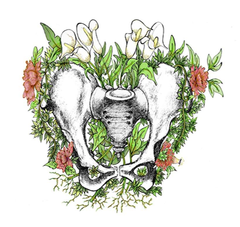 Anatomía viva... ilustrada 8