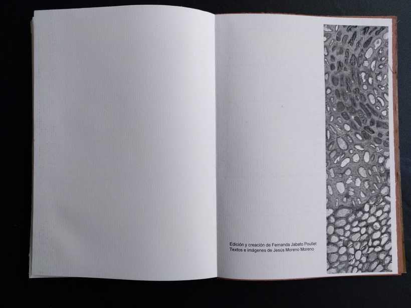 Mi Proyecto del curso: Encuadernación artesanal sin costuras CON LOS PIES EN EL SUELO (Primera Visión) fotografías de Jesús Moreno Moreno 16