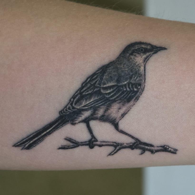 tattoo ave -1