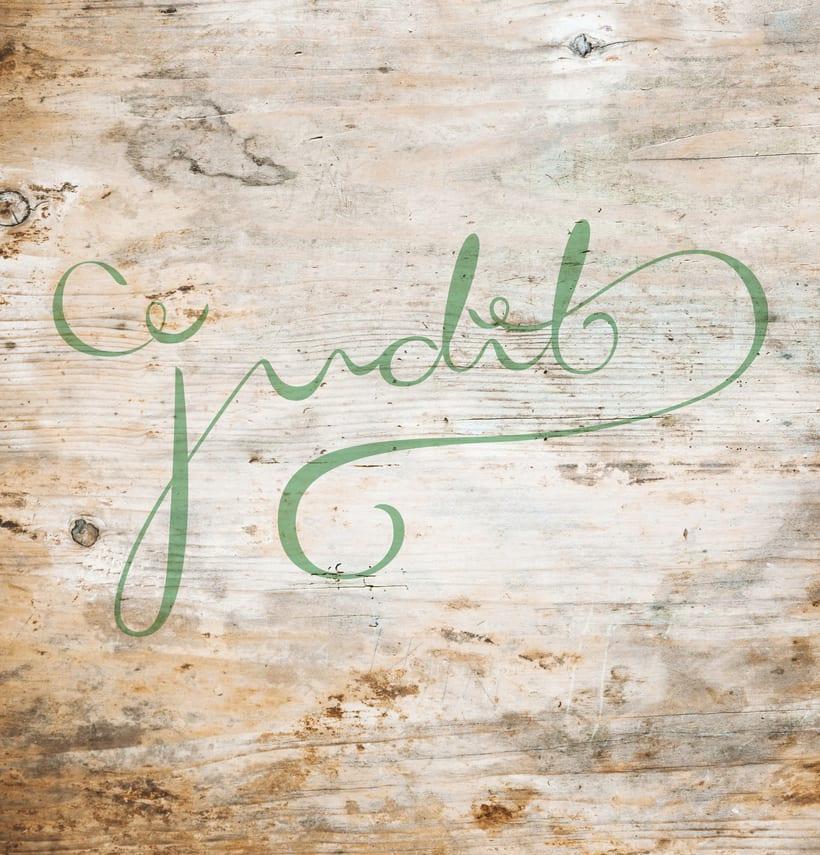 Judit Disseny Gràfic (lettering cursivo) 1