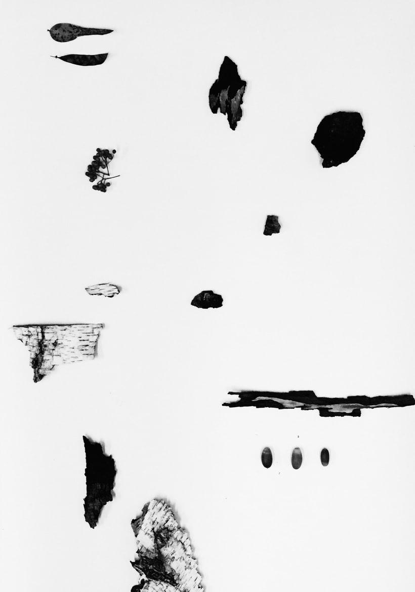 Mi Proyecto del curso: Las leyes de la percepción visual: unidad, peso, equilibrio y movimiento 9