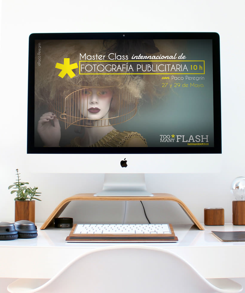 Desarrollo gráfico Too Many Flash 5