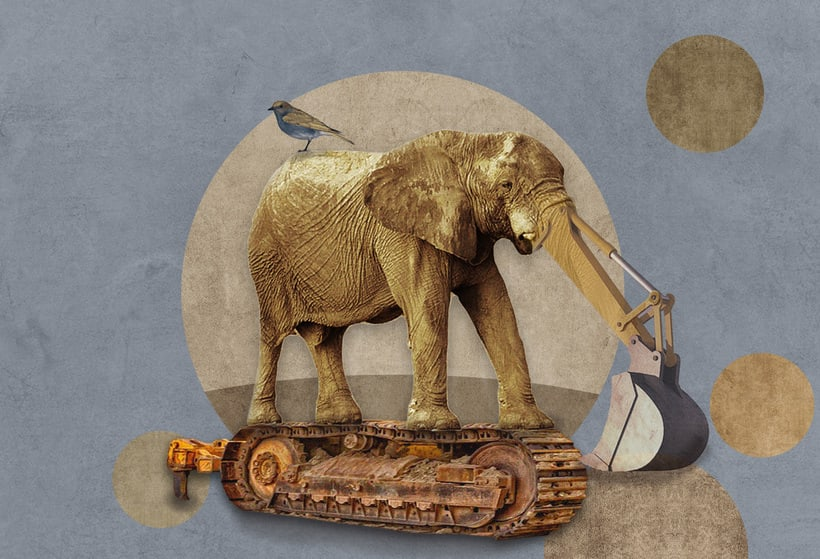 Máquinas animales 1