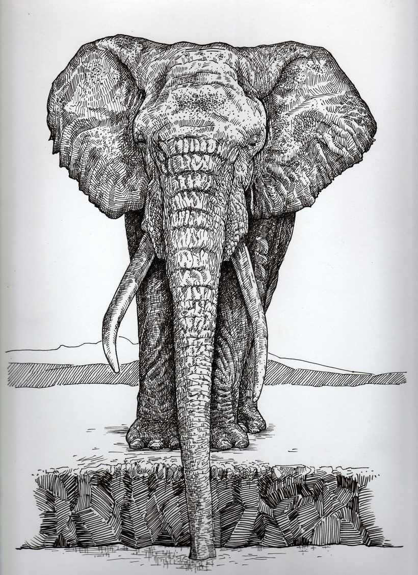 Ilustración con microfibra sobre papel obra 240gr. 23x30 cm. 0