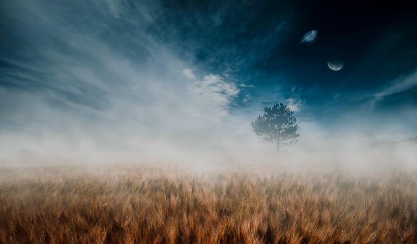 fotos de paisaje buscando el contraste de tonos  0