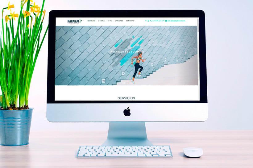 Diseño web - Programación HTML5 1