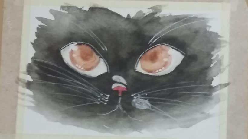 Gatos 0