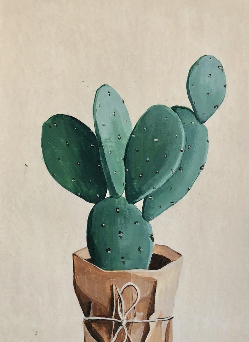 Cactus envuelto -1