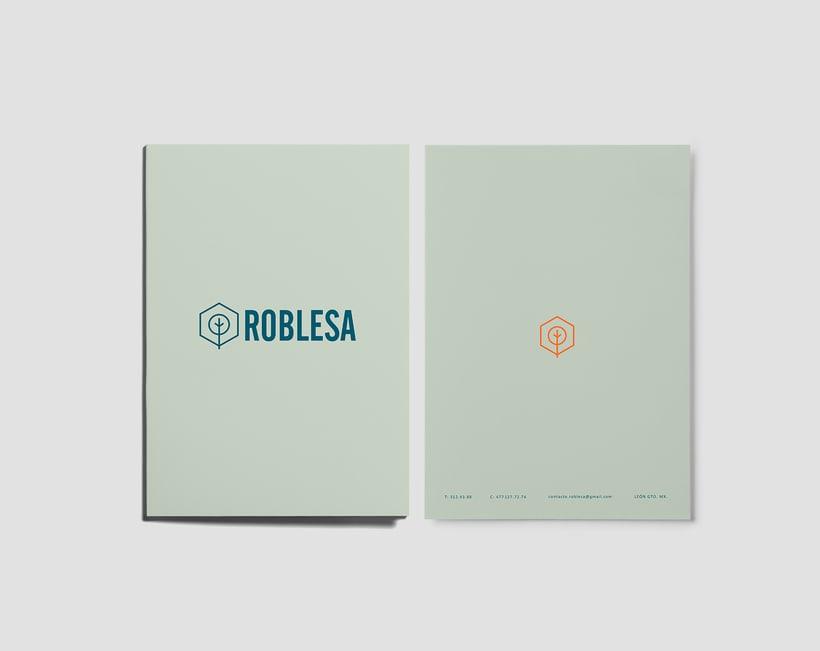 ROBLESA ASESORES 4