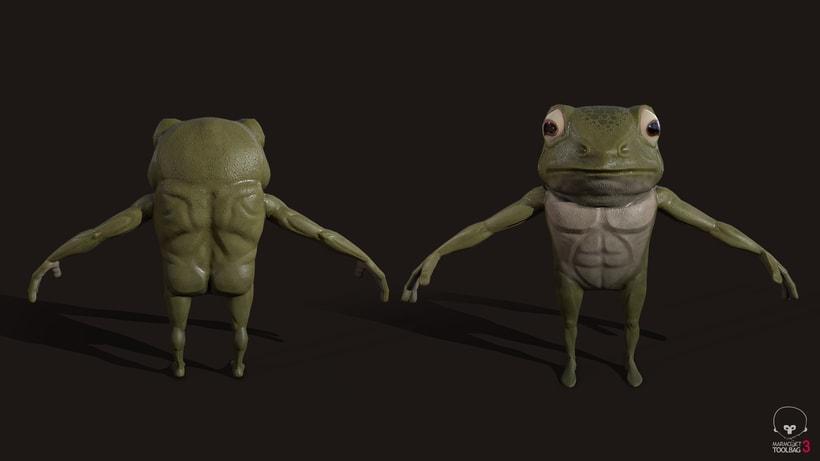 Samurai Frog 7