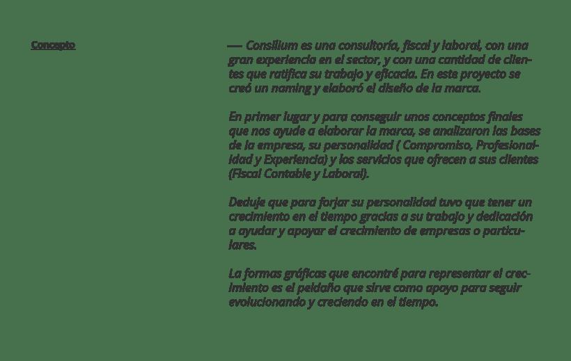 Consilium · Tu apoyo para crecer 0
