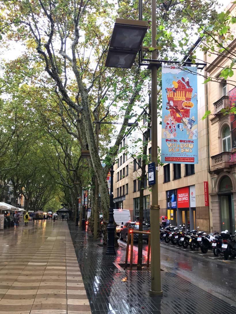 """Liceu de Barcelona.""""Viu el Liceu des de Dins"""" (Vive el Liceo desde dentro)  4"""