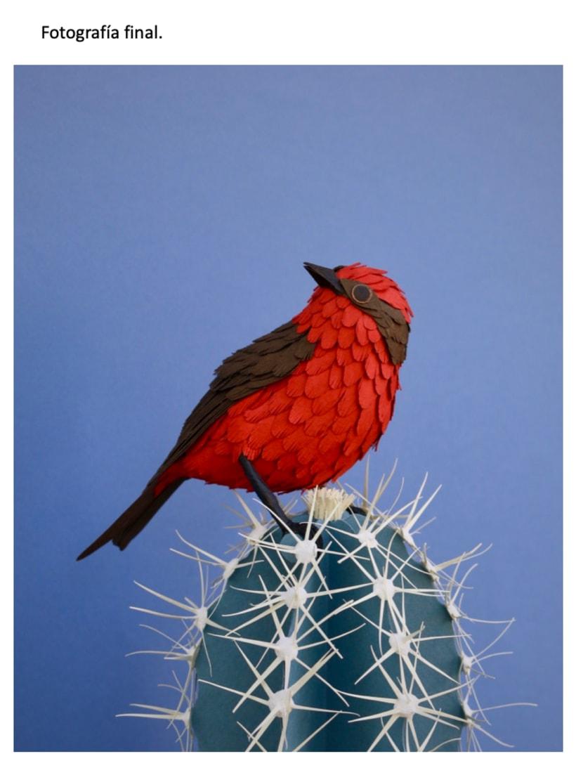 Mi Proyecto del curso: Petirrojo sobre cactus azulado 5