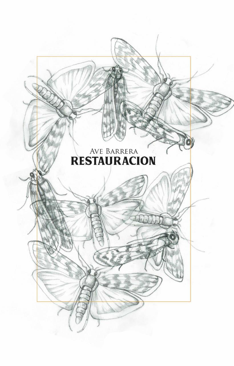 RESTAURACIÓN 3
