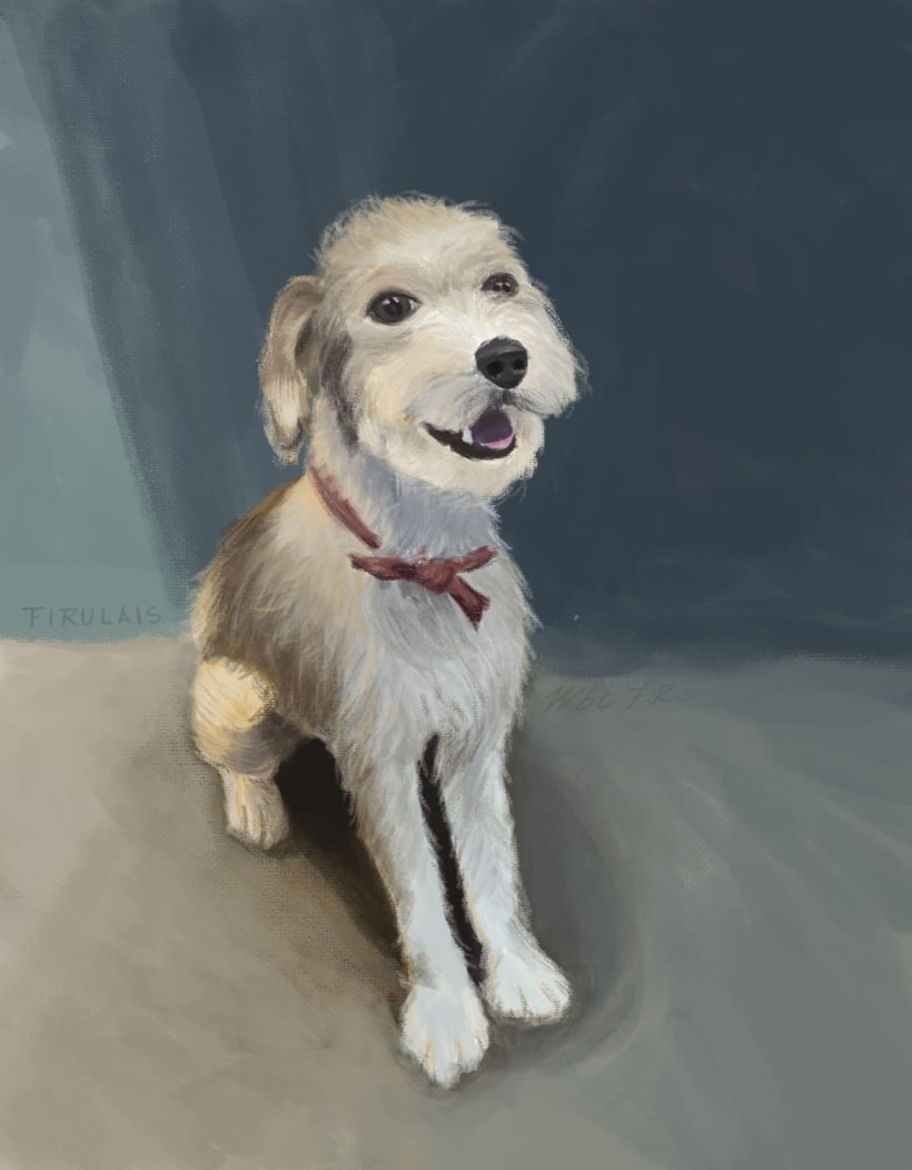 Retrato De Mi Perro Domestika