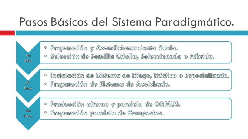 Https Www Domestika Org Es Projects 518191 Mastel Oliental