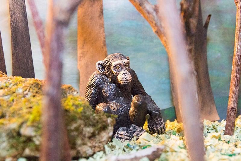 Detalle del mono