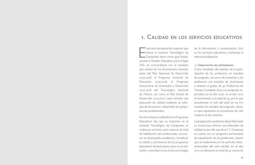 Mi Proyecto Del Curso Ejemplo De Informe De Rendición De